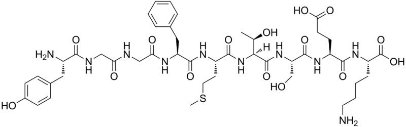 Key Difference - Dopamine vs Endorphins