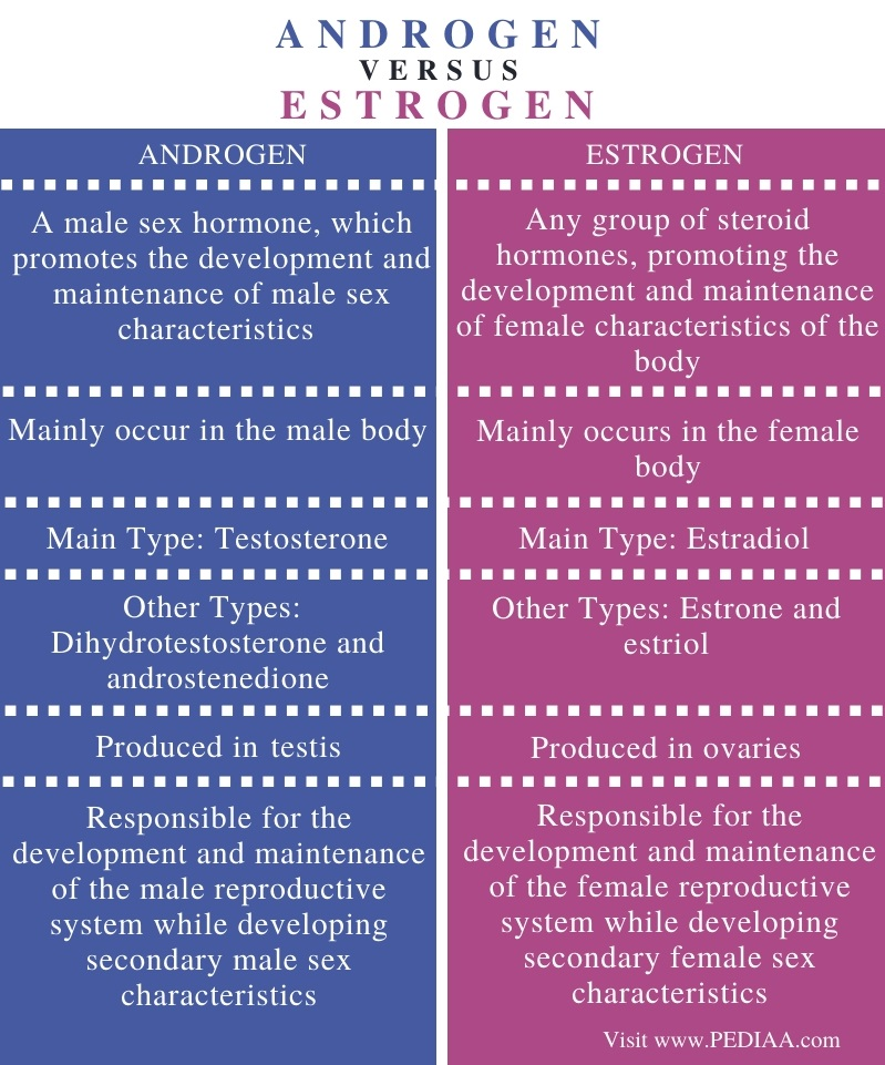 Difference Between Androgen and Estrogen - Comparison Summary