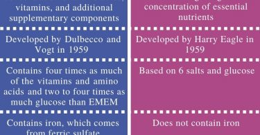 Difference Between DMEM and EMEM - Comparison Summary