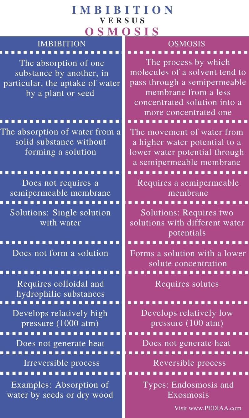 Difference Between Imbibition and Osmosis - Comparison Summary