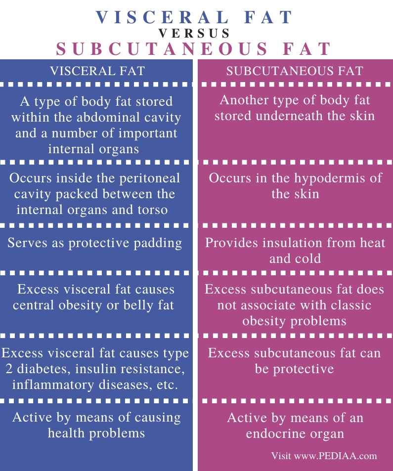 Difference Between Visceral and Subcutaneous Fat - Comparison Summary