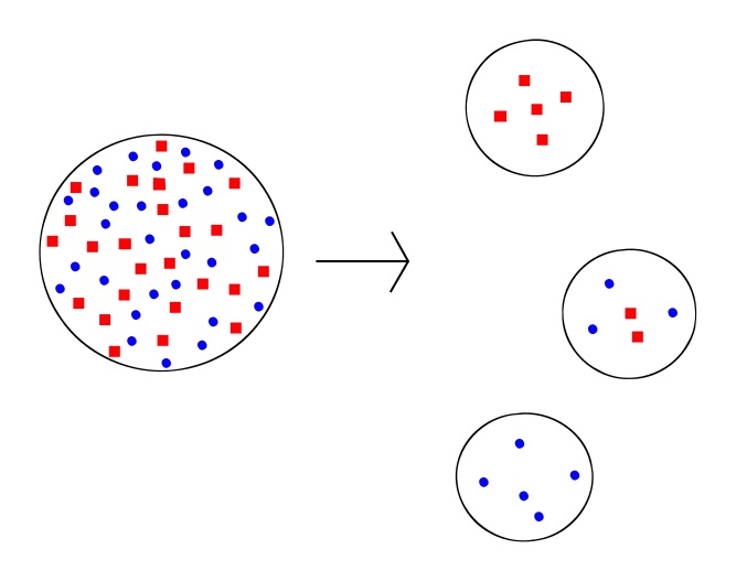 Difference Between Founder Effect and Bottleneck Effect