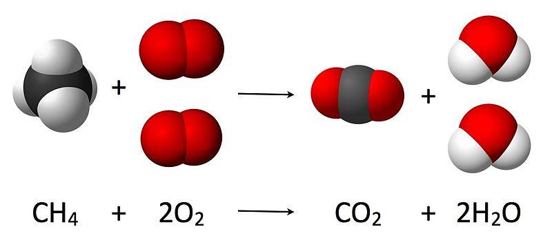 Respiration vs Burning