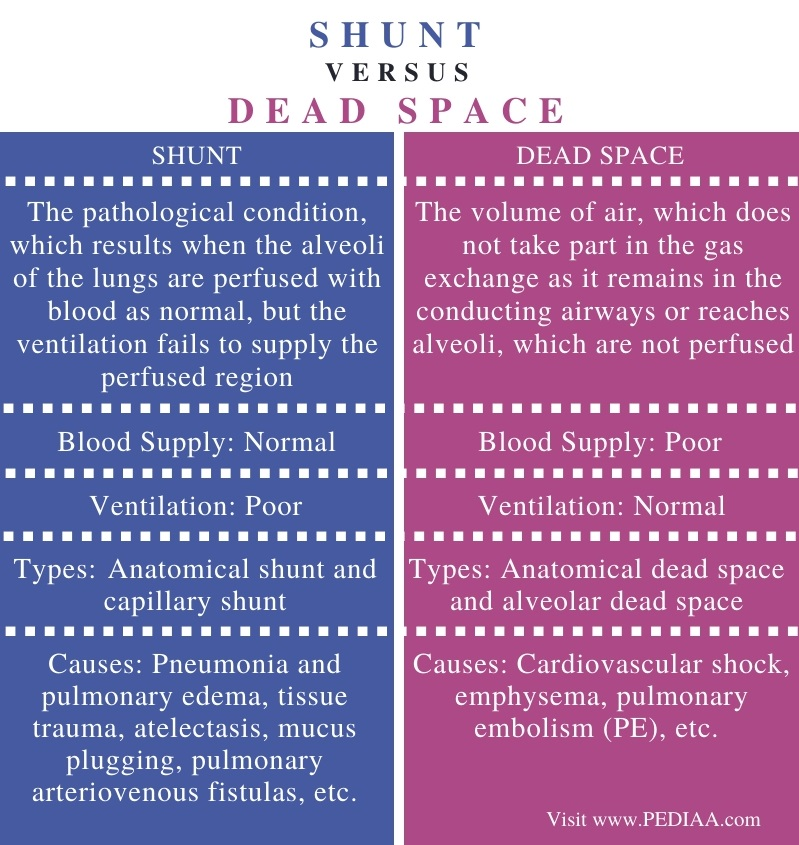 Difference Between Shunt and Dead Space - Comparison Summary
