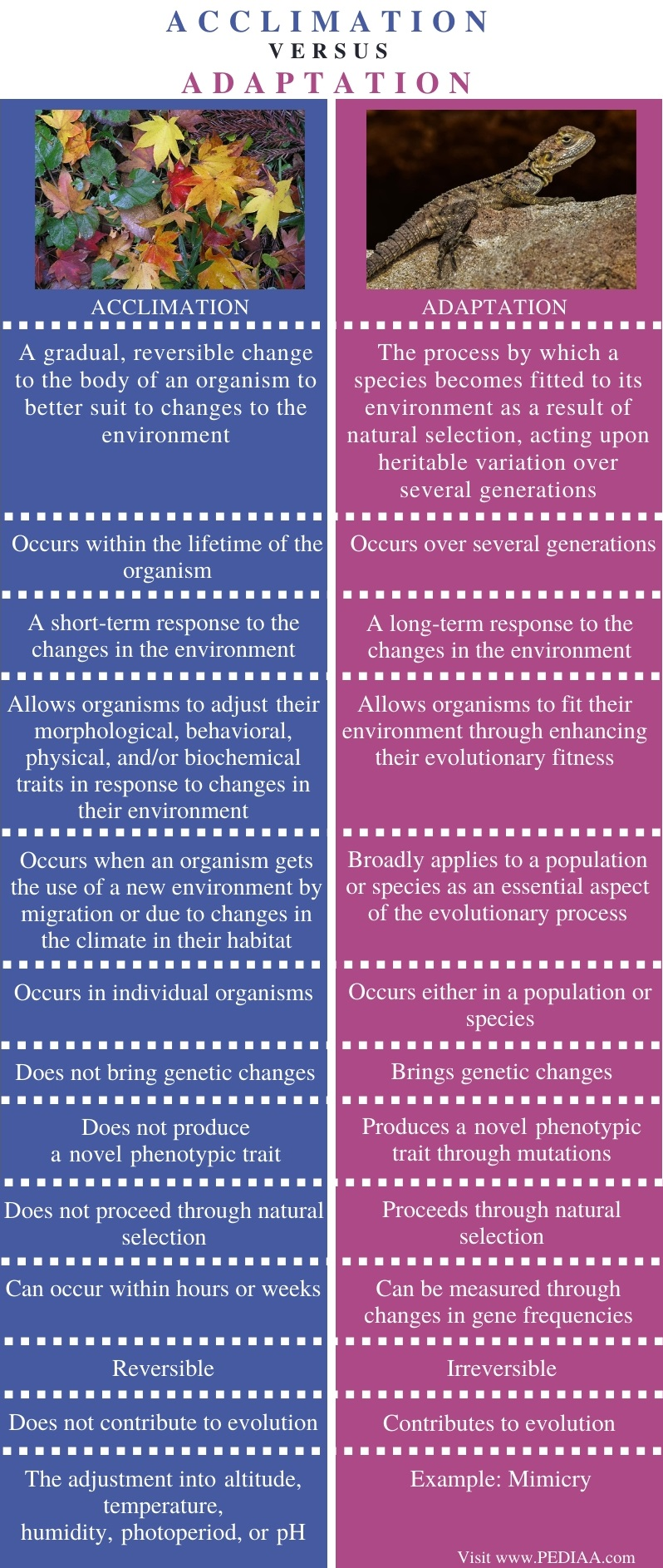Difference Between Acclimation and Adaptation - Comparison Summary