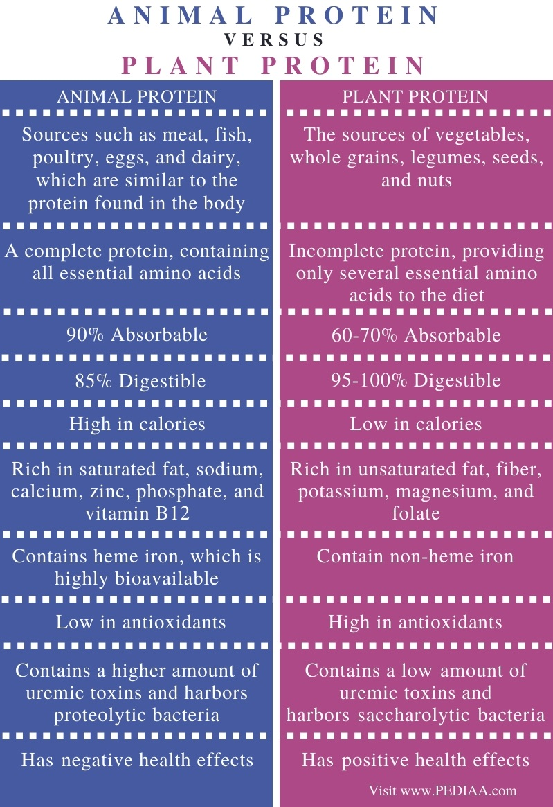 Difference Between Animal and Plant Protein - Comparison Summary