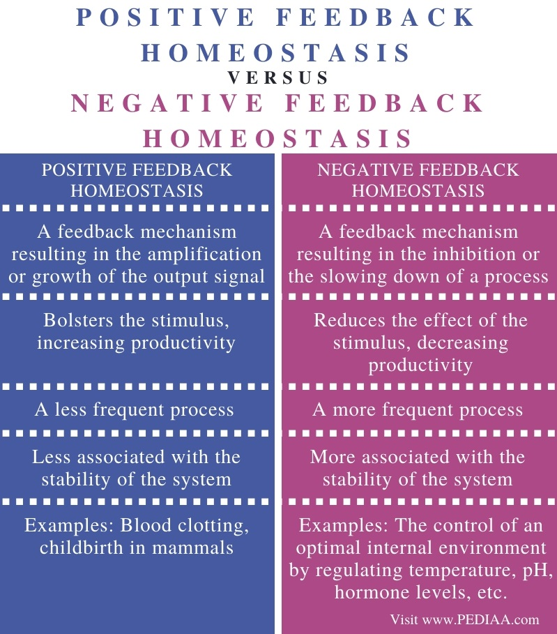 Difference Between Positive and Negative Feedback Homeostasis - Comparison Summary