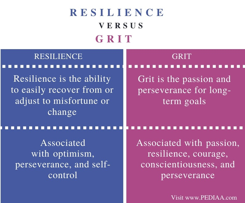 Difference Between Resilience and Grit - Comparison Summary