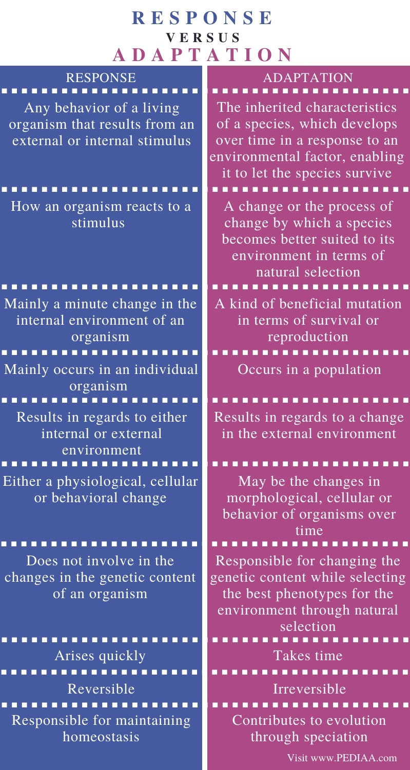 Difference Between Response and Adaptation - Comparison Summary