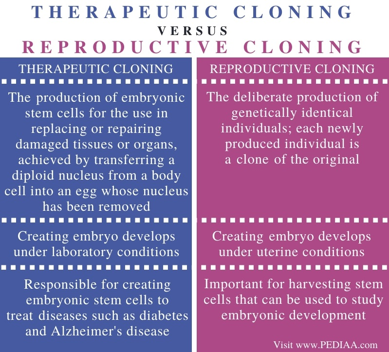 Difference Between Therapeutic and Reproductive Cloning - Comparison Summary