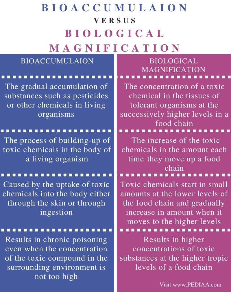 Difference Between Bioaccumulation and Biological Magnification - Comparison Summary
