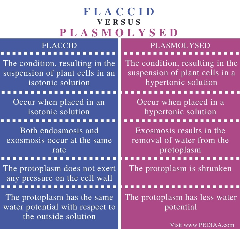 Difference Between Flaccid and Plasmolysed - Comparison Summary