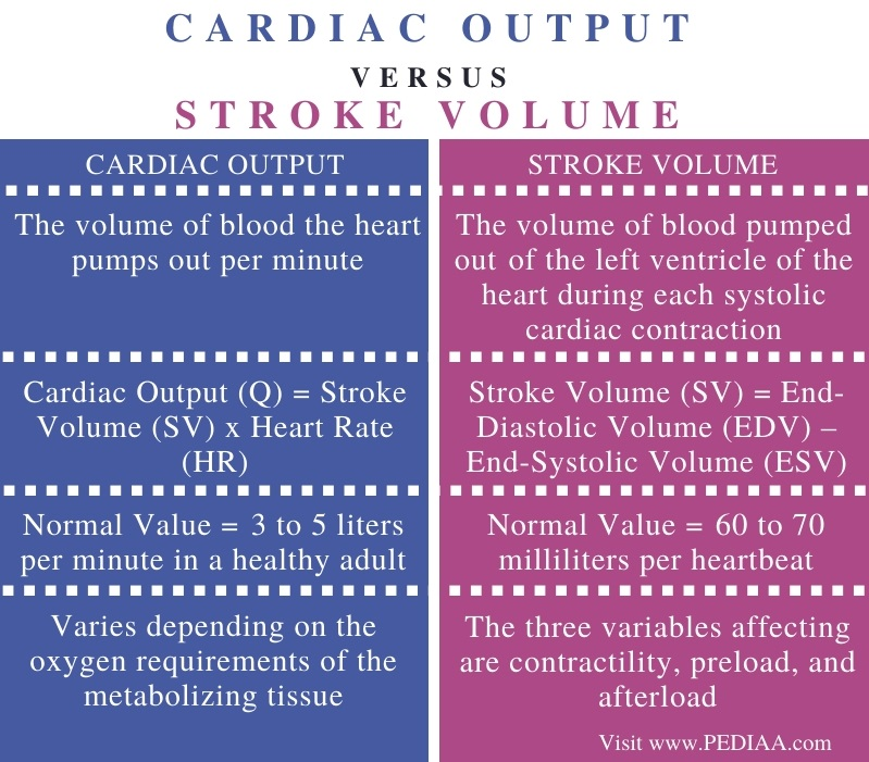 Difference Between Cardiac Output and Stroke Volume - Comparison Summary