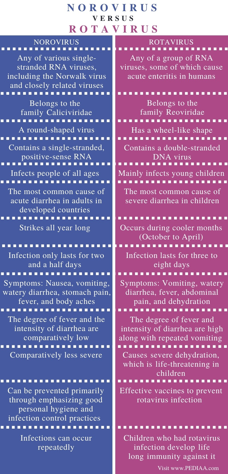Difference Between Norovirus and Rotavirus - Comparison Summary