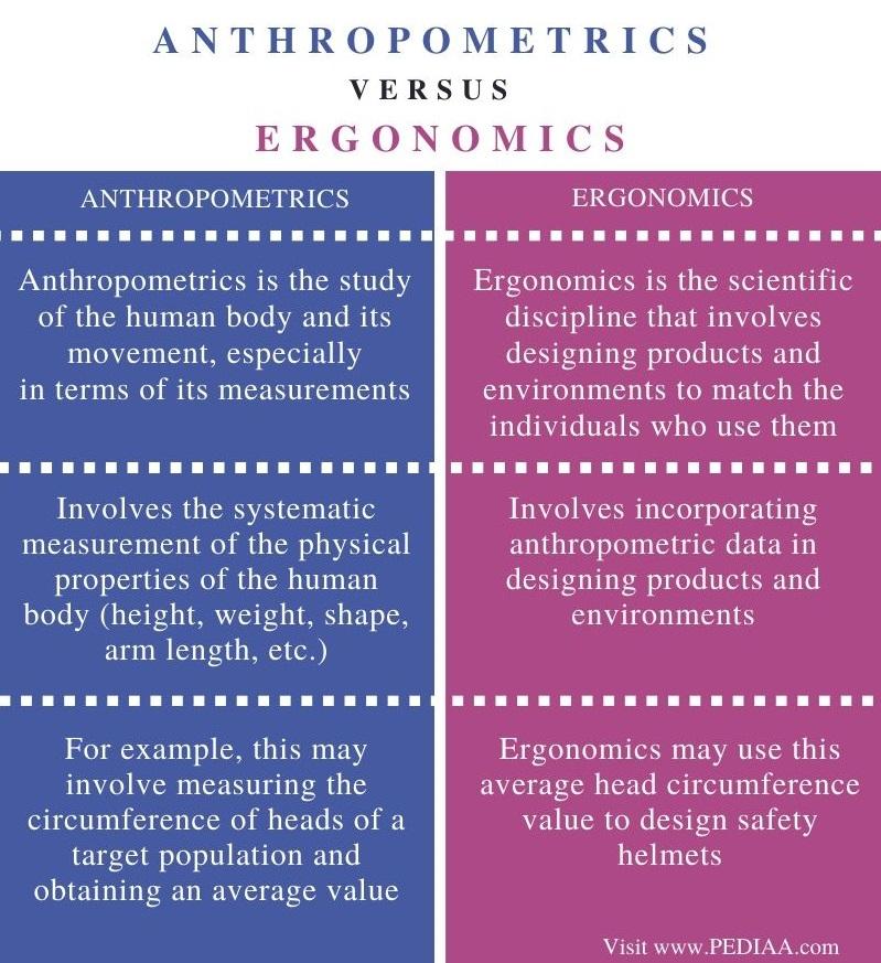 Difference Between Anthropometrics and Ergonomics - Comparison Summary