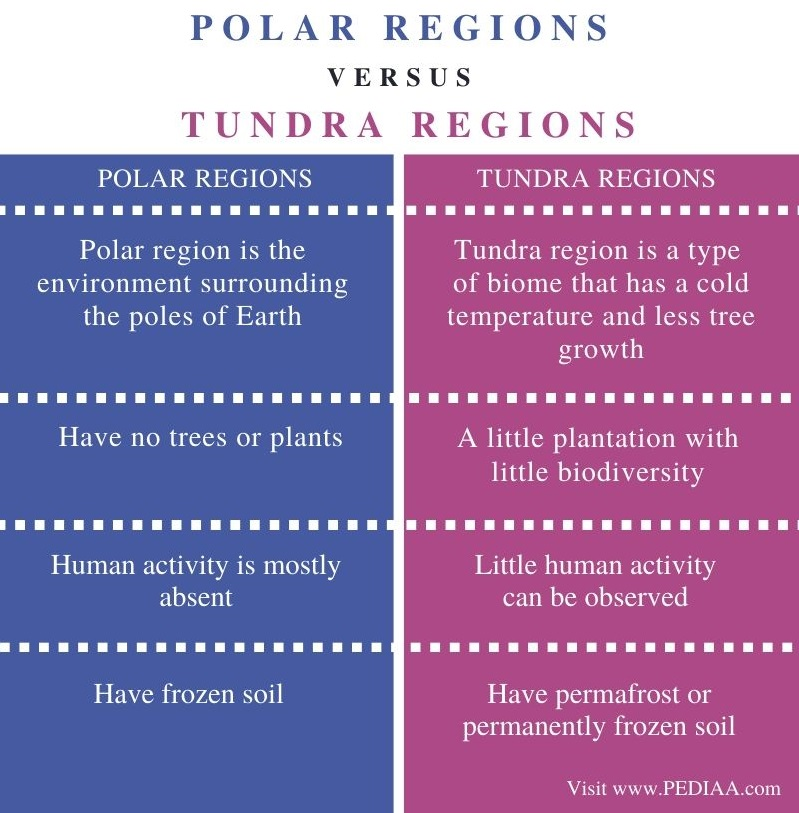 Difference Between Polar and Tundra Regions - Comparison Summary