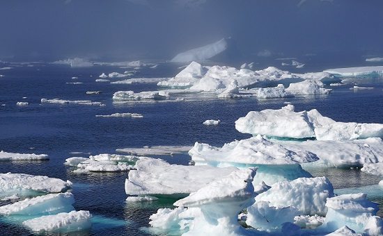 Difference Between Polar and Tundra Regions