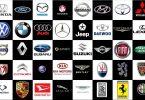 Brand Name and Trademark