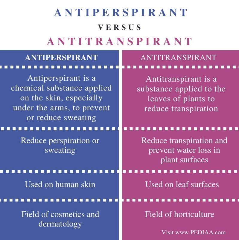 Difference Between Antiperspirant and Antitranspirant- Comparison Summary