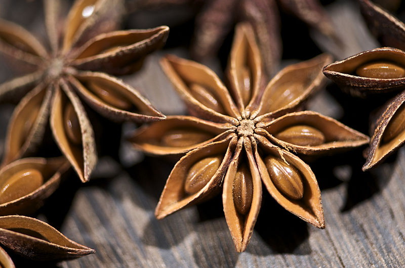Difference Between Aniseed and Star Anise