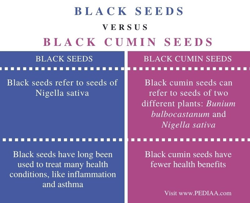 Difference Between Black Seeds and Black Cumin Seeds - Comparison Summary