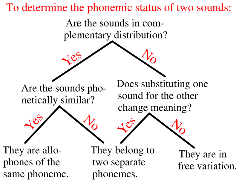 Difference Between Allophone and Allomorph