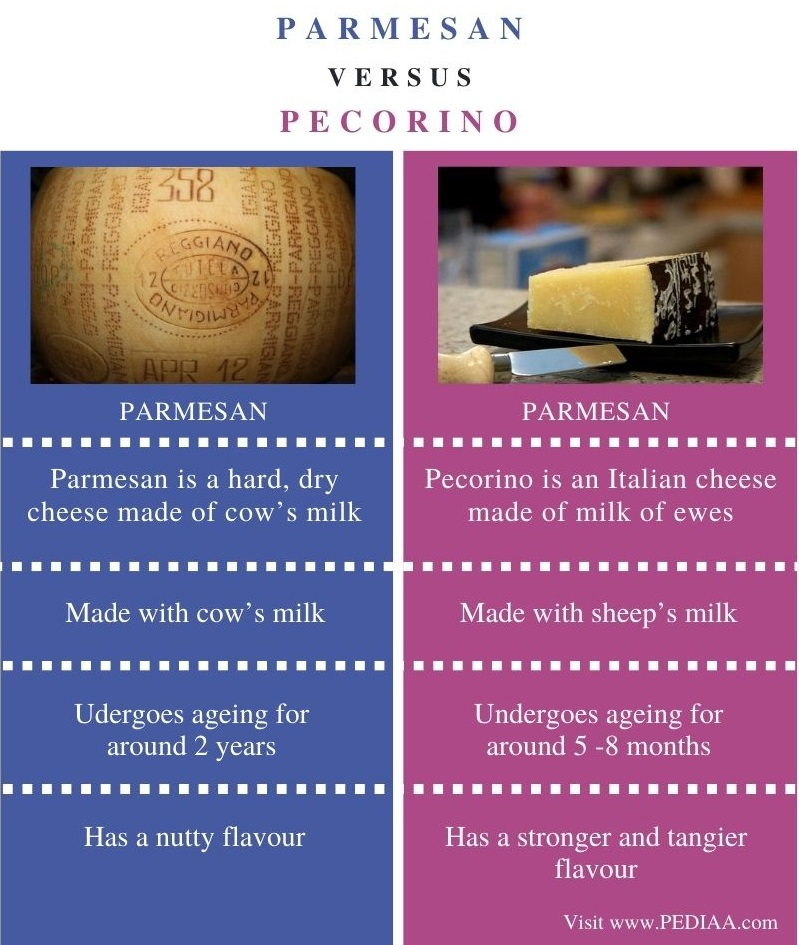 Difference Between Parmesan and Pecorino - Comparison Summary
