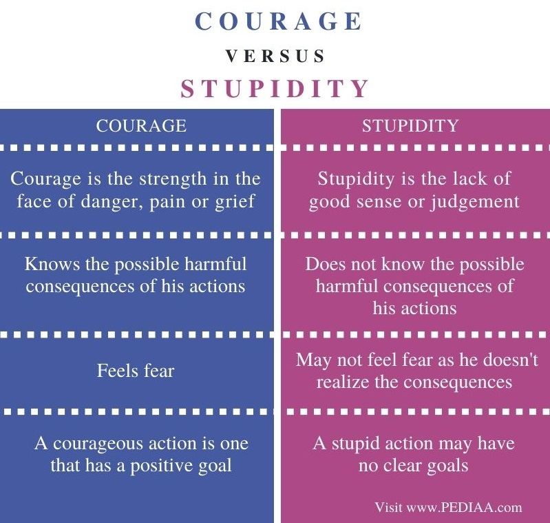 Difference Between Courage and Stupidity - Comparison Summary