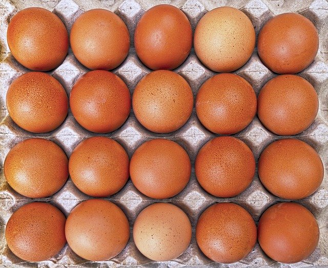 Difference Between Free Range and Cage Free Eggs