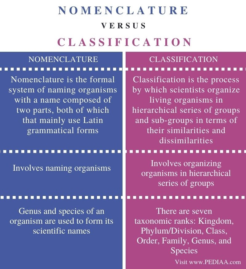 Difference Between Nomenclature and Classification - Comparison Summary