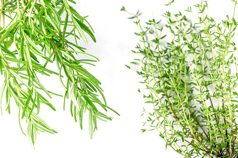 Difference Between Thyme and Rosemary