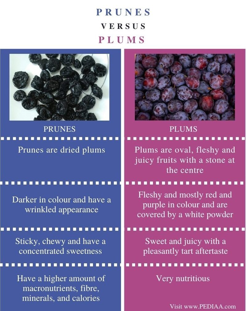 Difference Between Prunes and Plums - Comparison Summary