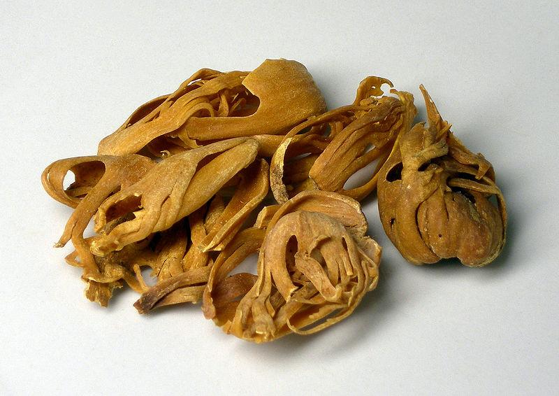 Main Difference - Mace vs Nutmeg