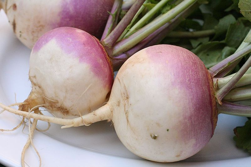 Difference Between Rutabaga and Turnip