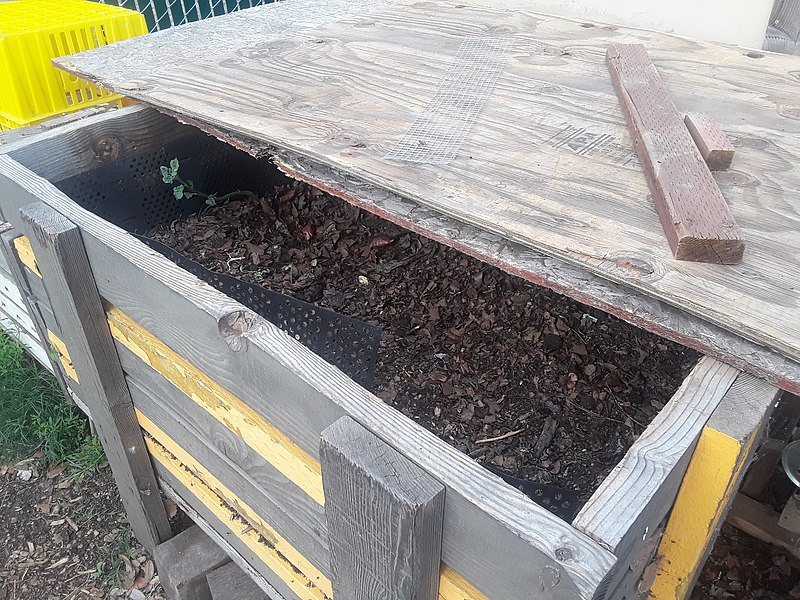 Difference Between Worm Farm and Compost