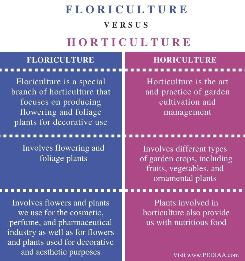 Difference Between Floriculture and Horticulture - Comparison Summary