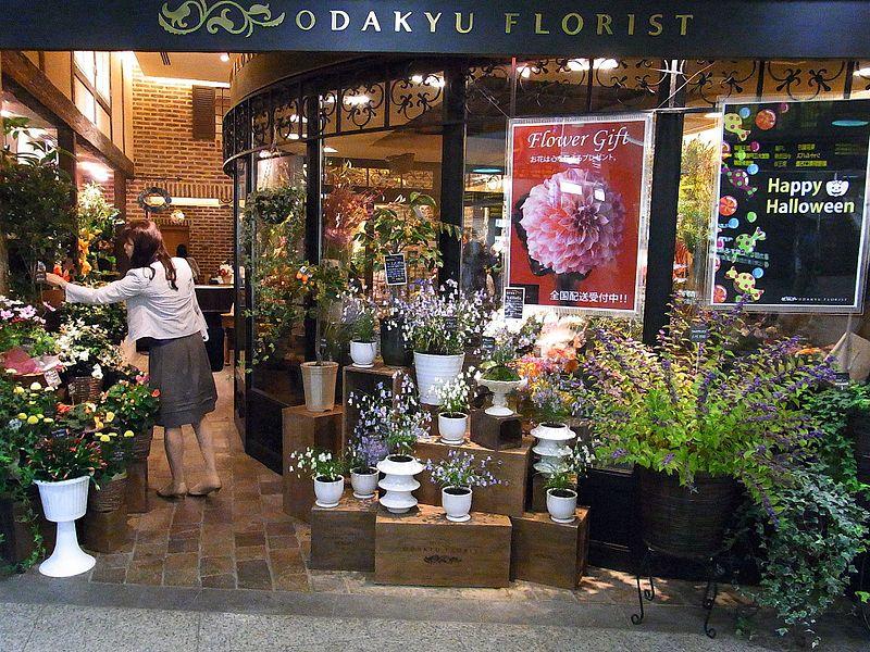 Main Difference - Florist vs Floral Designer