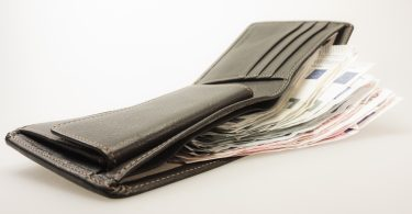 Difference Between Purse and Wallet_