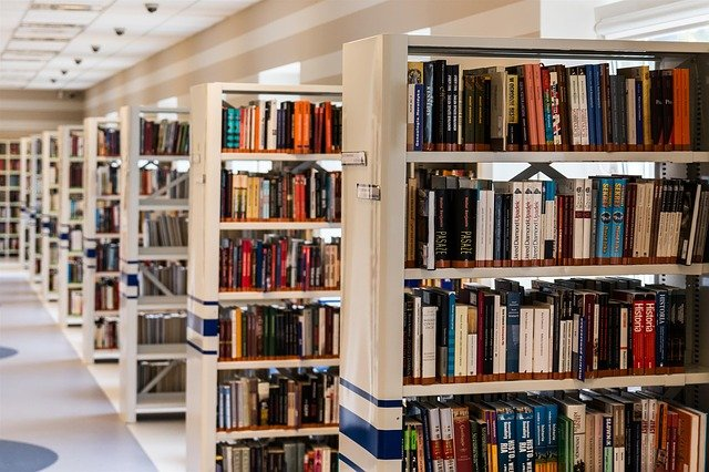 Difference Between Archive and Library