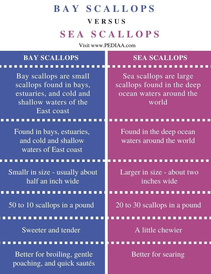 Difference Between Bay Scallops and Sea Scallops - Comparison Summary