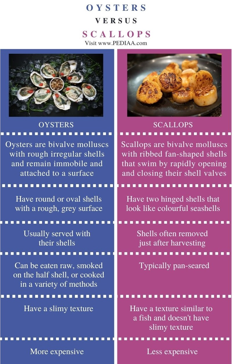 Difference Between Oysters and Scallops - Comparison Summary