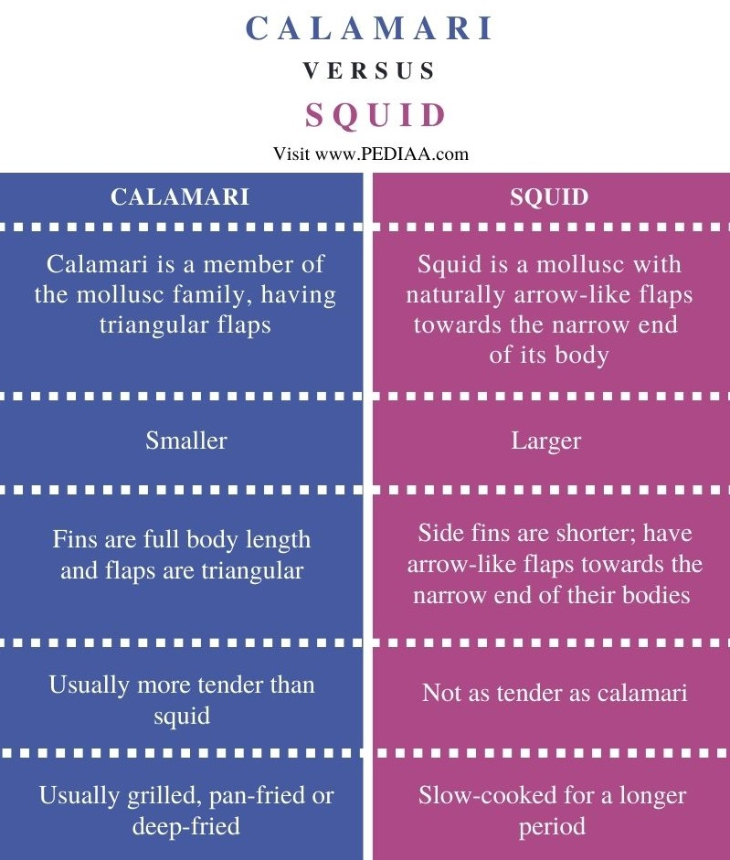 Difference Between Calamari and Squid - Comparison Summary