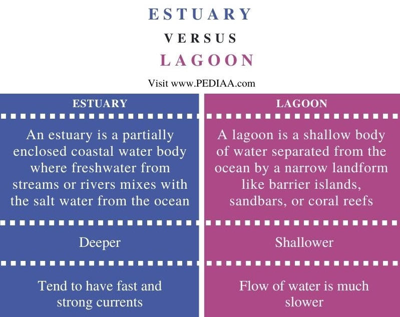 Difference Between Estuary and Lagoon - Comparison Summary