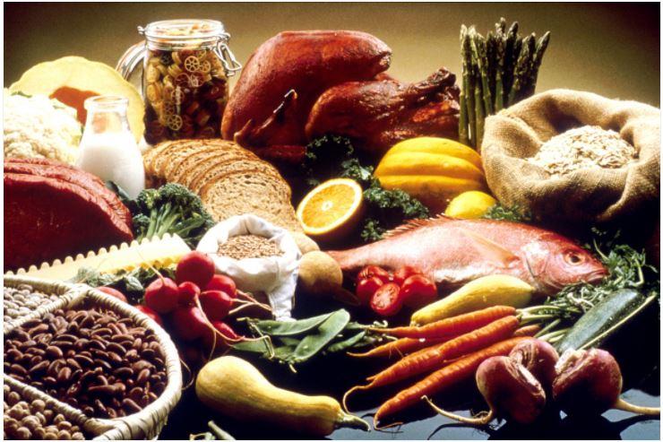 Food vs Meal