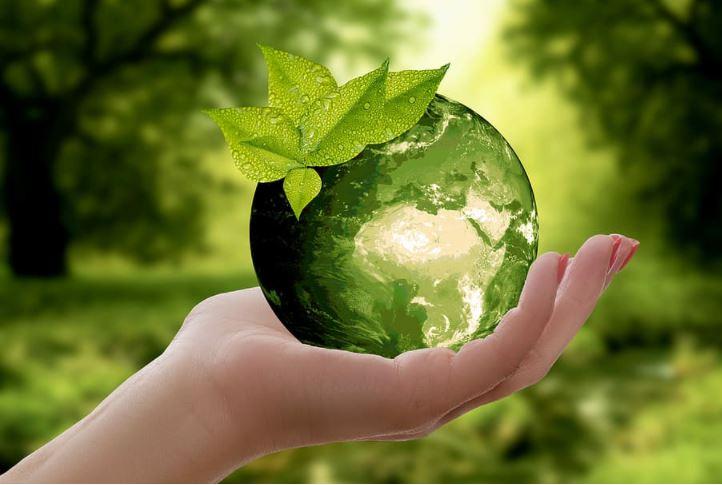 Sustainable Development vs Green Development