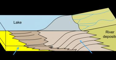 Delta vs Estuary
