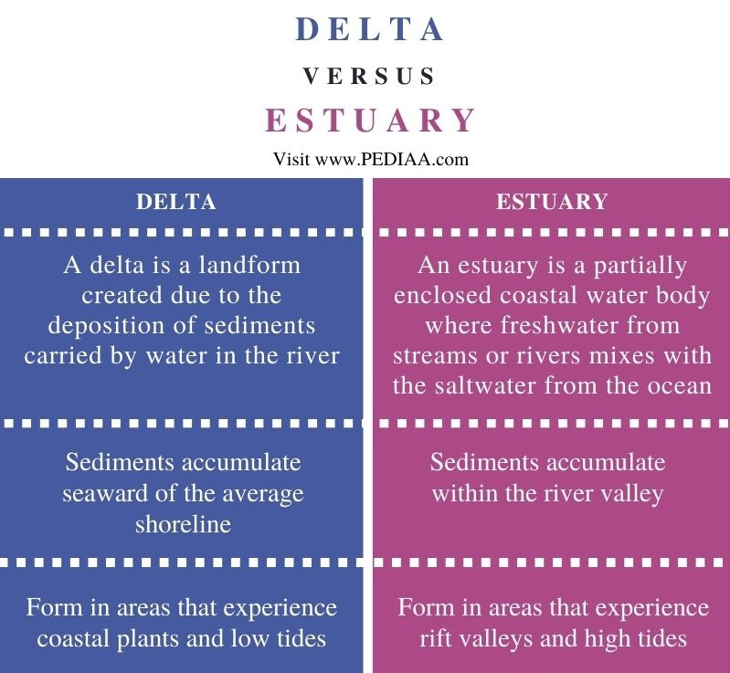 Difference Between Delta and Estuary - Comparison Summary