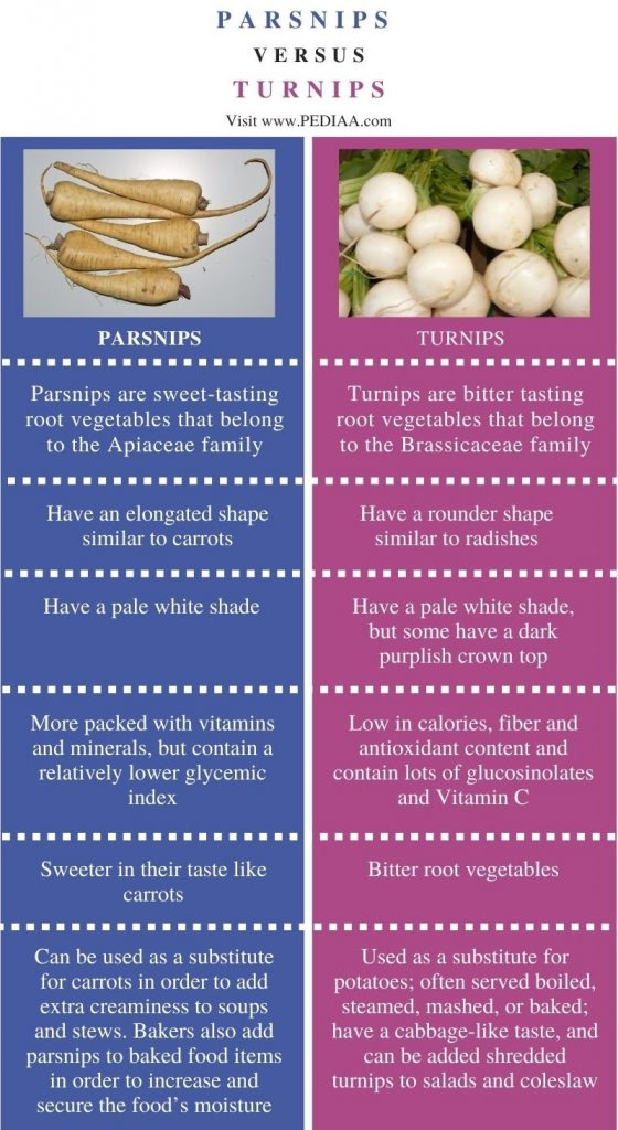 Difference Between Parsnips and Turnips - Comparison Summary